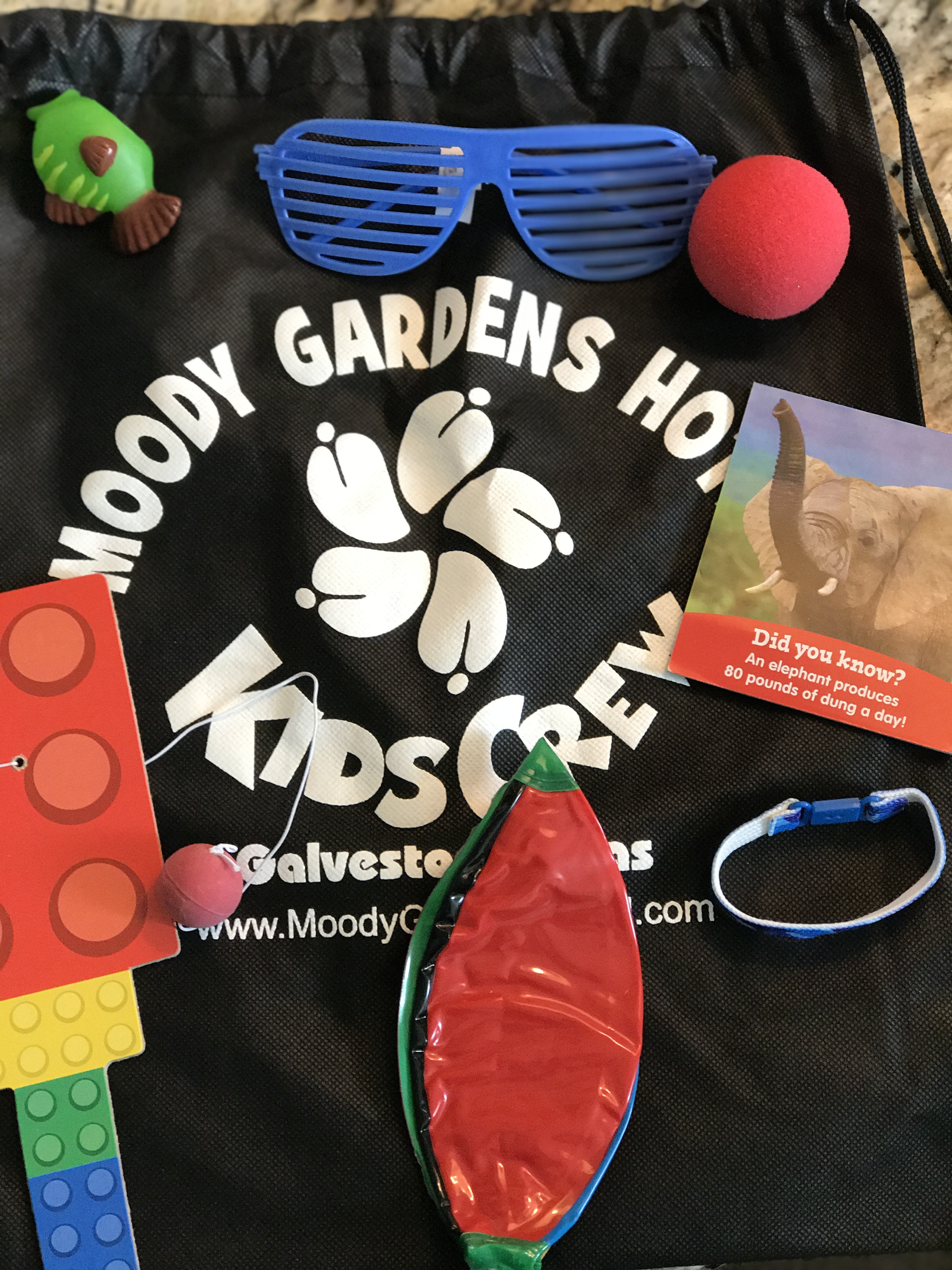 During Check In The Kids Were Each Given A Moody Gardens Backpack With  Toys, Sunglasses, Notepads And Bracelets For Us. The Bracelets Are Given To  Parents ...